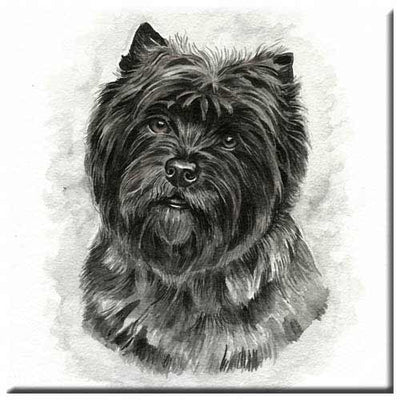 Cairn Terrier  Tile