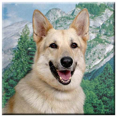 German Shepherd  Tile