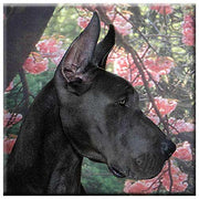 Great Dane  Tile