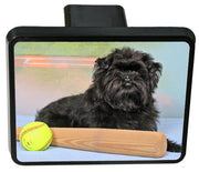 Affenpinscher Trailer Hitch Cover