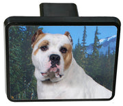 American Bulldog Trailer Hitch Cover