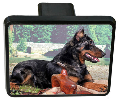 Beauceron Trailer Hitch Cover