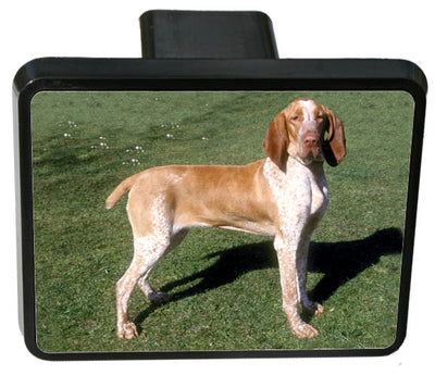 Bracco Italiano Trailer Hitch Cover