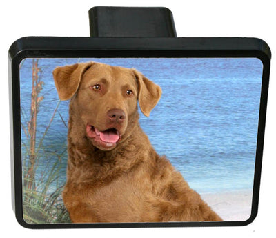 Chesapeake Bay Retriever Trailer Hitch Cover