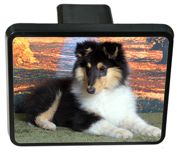 Collie Rough Trailer Hitch Cover