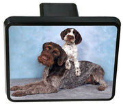 German Wirehair Pointer Trailer Hitch Cover