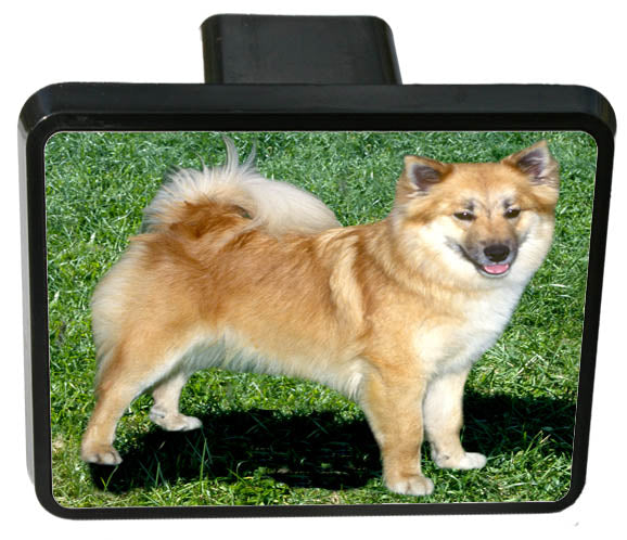 Icelandic Sheepdog Trailer Hitch Cover