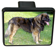 Leonberger Trailer Hitch Cover