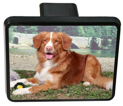 Nova Scotia Duck Toller Trailer Hitch Cover