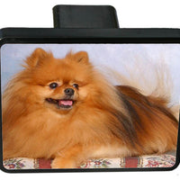 Pomeranian Trailer Hitch Cover