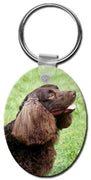 American Water Spaniel  Key Chain