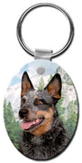 Australian Cattle Dog  Key Chain