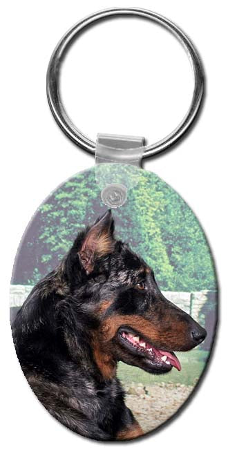 Beauceron  Key Chain