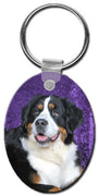 Bernese Mountain Dog  Key Chain