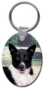 Canaan Dog  Key Chain