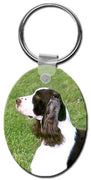English Springer Spaniel  Key Chain