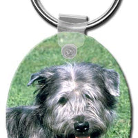 Glen of Imaal  Key Chain
