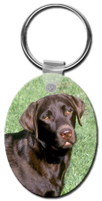 Labrador Retriever  Key Chain