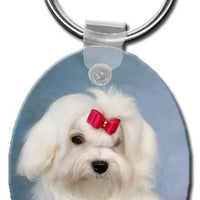 Maltese  Key Chain
