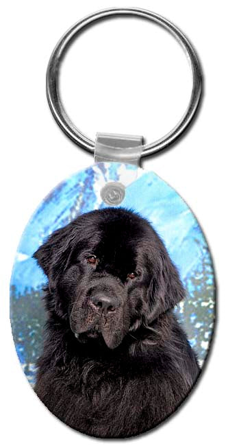 Newfoundland  Key Chain