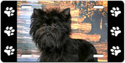 Affenpinscher License Plate