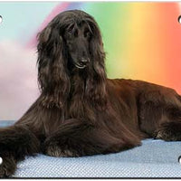 Afghan Hound License Plate