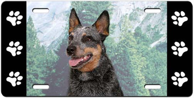 Australian Cattle Dog License Plate
