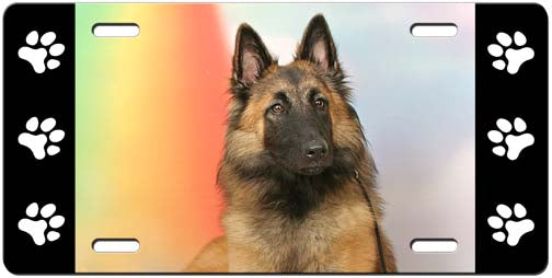 Belgian Tervuren License Plate