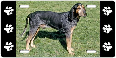 Blue Tick Coonhound License Plate
