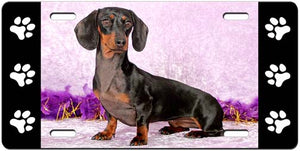 Dachshund License Plate