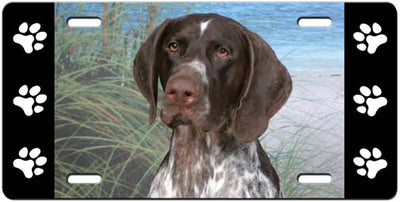German Shorthair Pointer License Plate