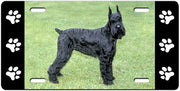 Giant Schnauzer License Plate