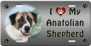 I Love My Anatolian Shepherd License Plate