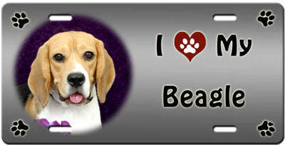 I Love My Beagle License Plate