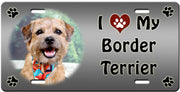 I Love My Border Terrier License Plate