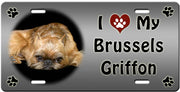 I Love My Brussells Griffon License Plate