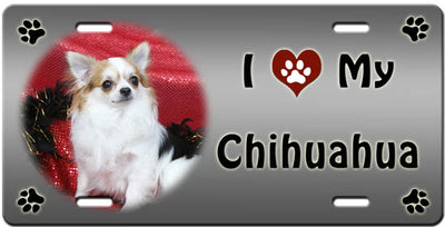 I Love My Chihuahua - Long License Plate