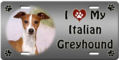 I Love My Italian Greyhound License Plate