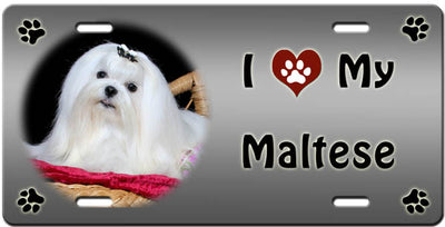 I Love My Maltese License Plate