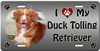 I Love My Nova Scotia Duck Toller License Plate