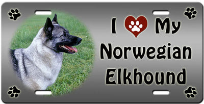 I Love My Norwegian Elkhound License Plate