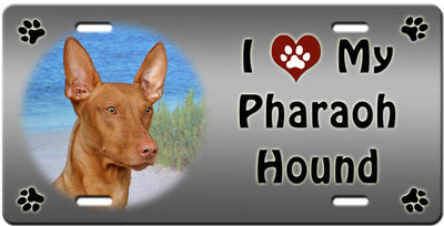 I Love My Pharaoh Hound License Plate