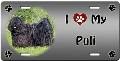 I Love My Puli License Plate