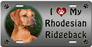 I Love My Rhodesian Ridgeback License Plate