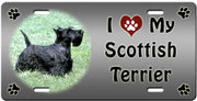 I Love My Scottish Terrier License Plate