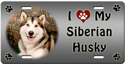 I Love My Siberian Husky License Plate