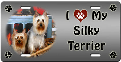 I Love My Silky Terrier License Plate