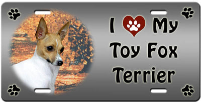 I Love My Toy Fox Terrier License Plate
