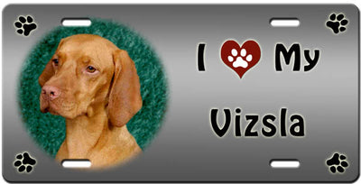 I Love My Vizsla License Plate