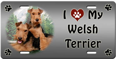 I Love My Welsh Terrier License Plate